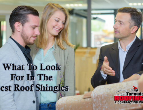 What To Look For In The Best Roof Shingles