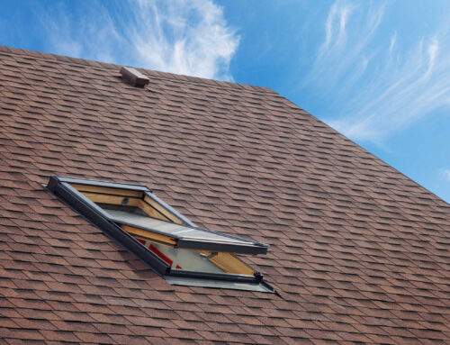 What Are the Best Roof Shingles For Florida Homes?